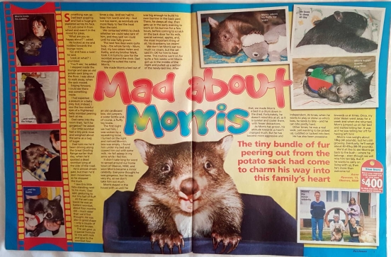 Pet Power - Mad About Morris article